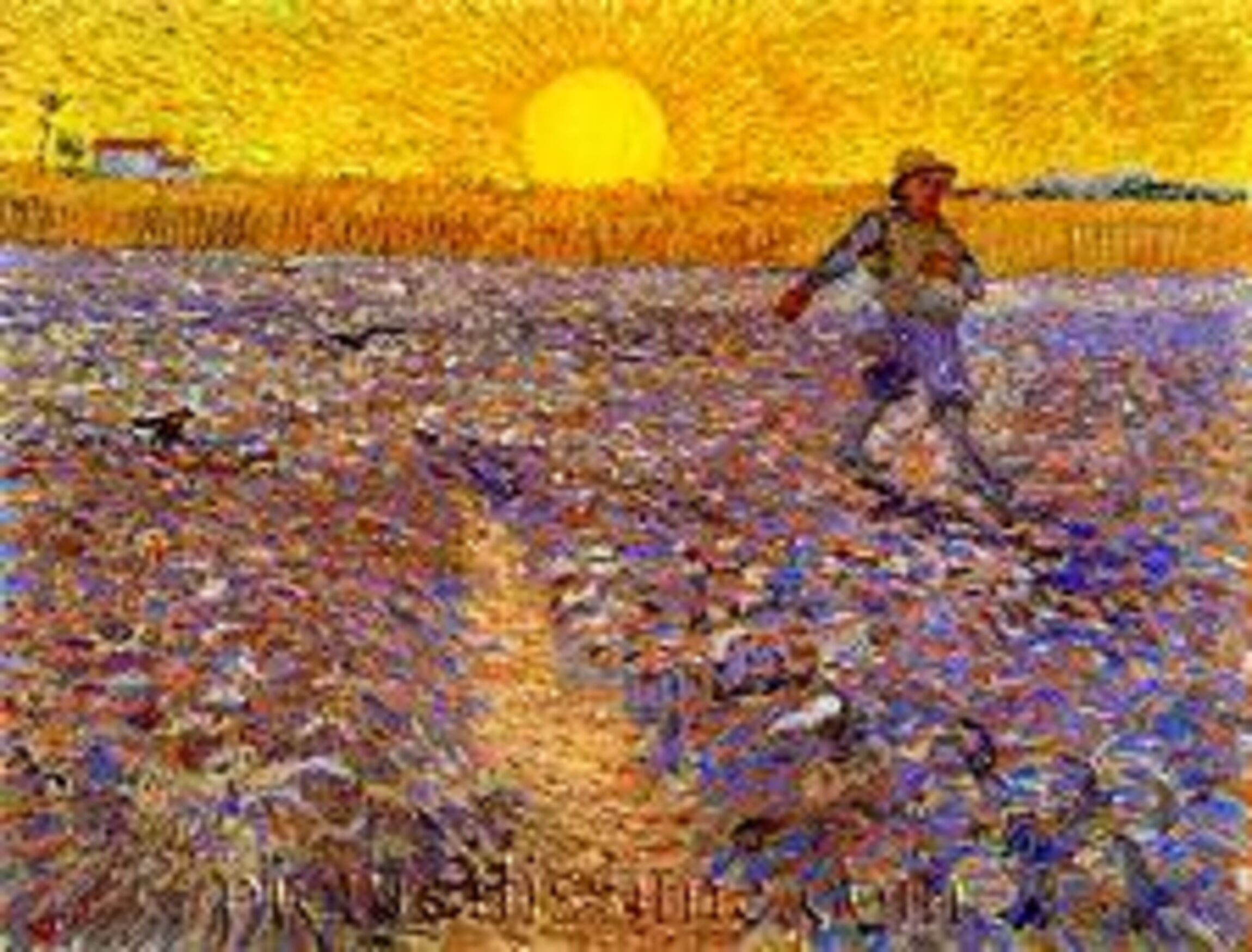 Rpi Loccum Der Samann Von Vincent Van Gogh
